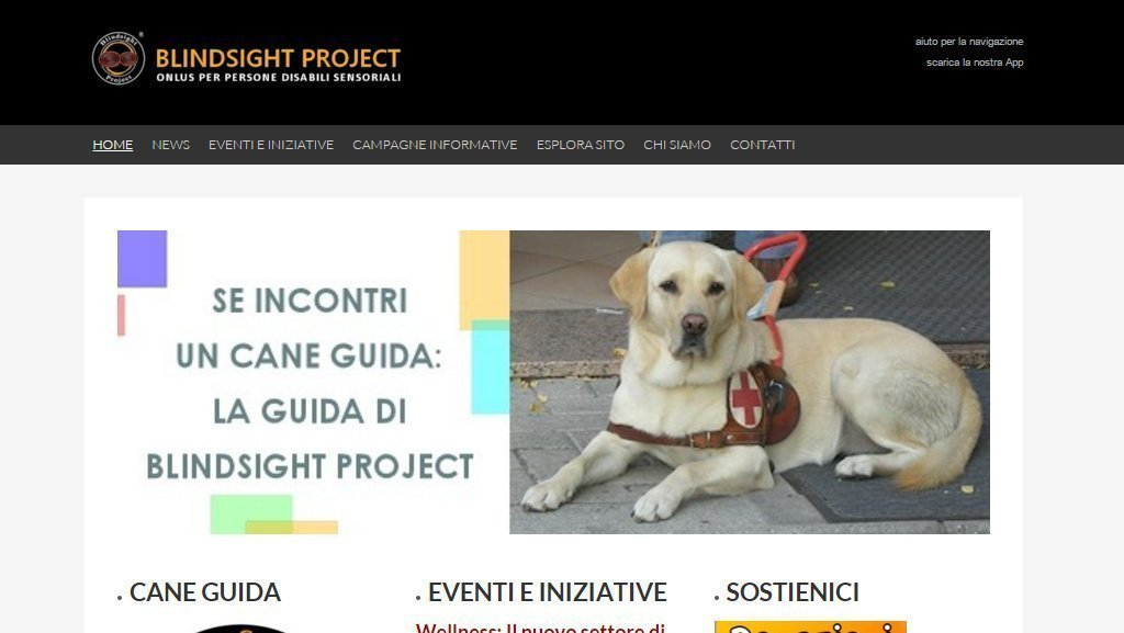 Screenshot sito web di Blindsight Project ONLUS