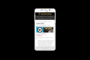 Web design - Sito web di Blindsight Project su smartphone